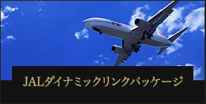 JALダイナミックリンクパッケージ 往復航空券+宿泊プラン